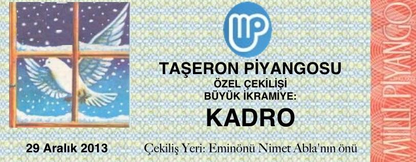 Taşeron2(1)
